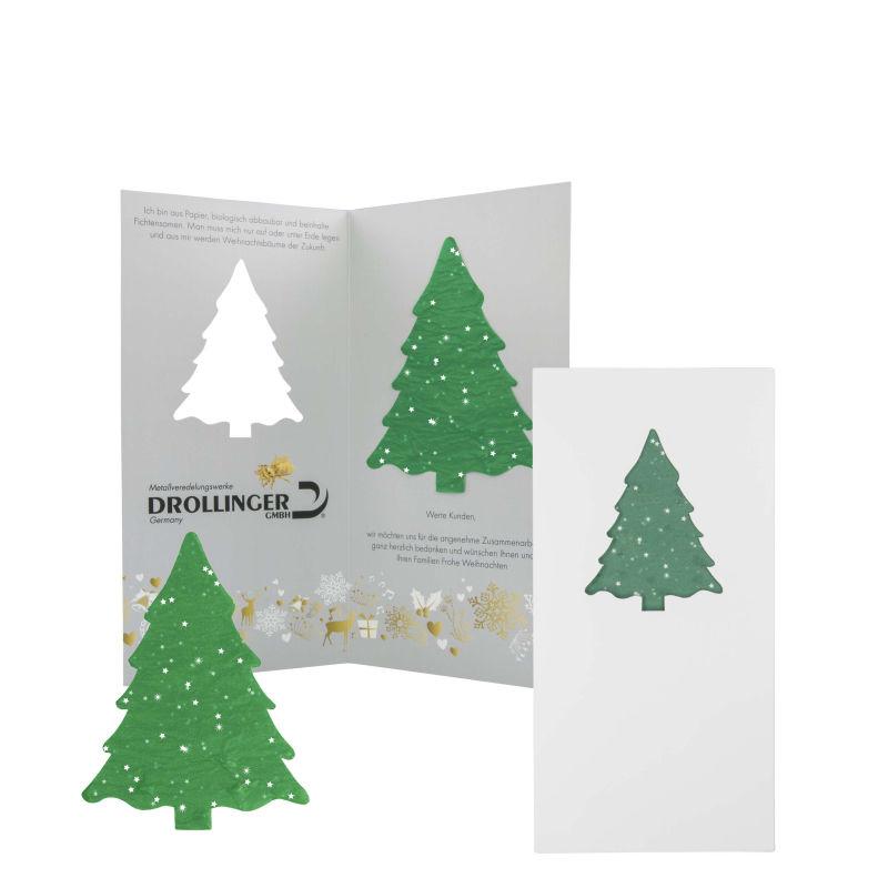 Fichten Samenpapier als Mailartikel versenden, die perfekte Geschenkidee für Ihre Kunden
